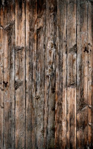 Click Props Hintergrund Vinyl mit Bild Wood Verticle Natural 1,52 x 2,44m Nr. CP-593007