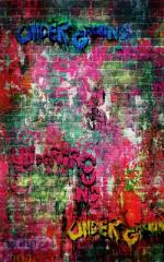 Click Props Hintergrund Vinyl mit Bild Brick Graffiti 1,52 x 2,44m Nr. CP-590822